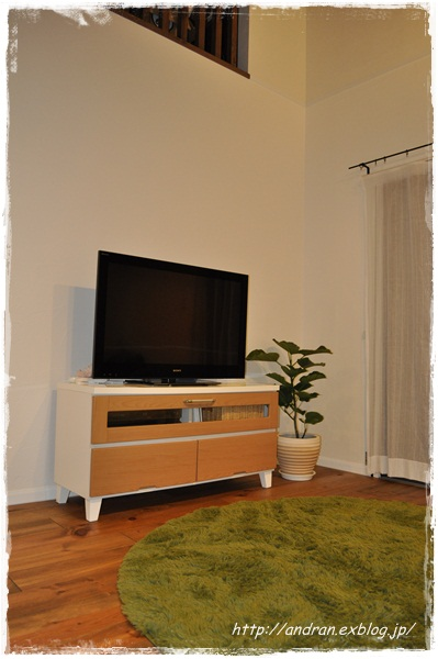 リビング TVと観葉植物_c0176271_0194317.jpg
