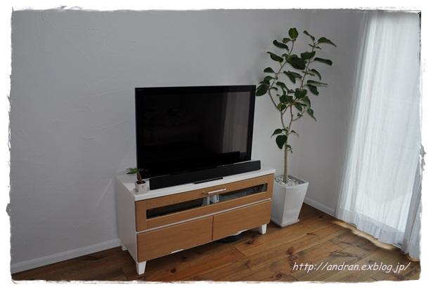 リビング TVと観葉植物_c0176271_020163.jpg