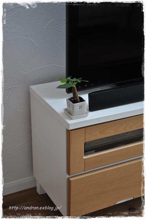 リビング TVと観葉植物_c0176271_0211642.jpg