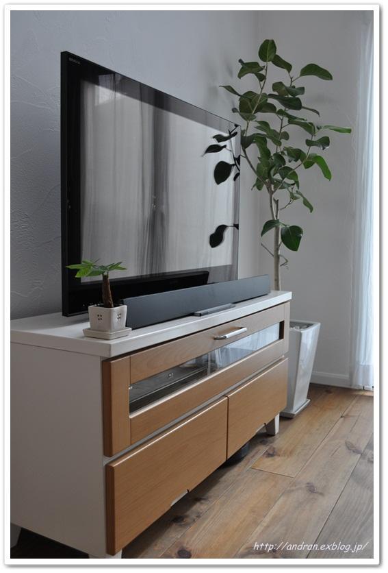 リビング TVと観葉植物_c0176271_0221255.jpg