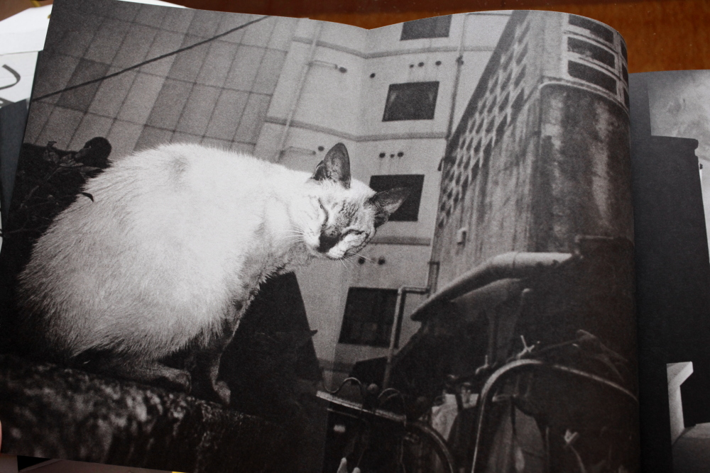 Anders Petersen 「City Diary」_c0016177_19475895.jpg