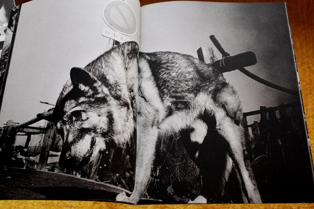 Anders Petersen 「City Diary」_c0016177_19491788.jpg