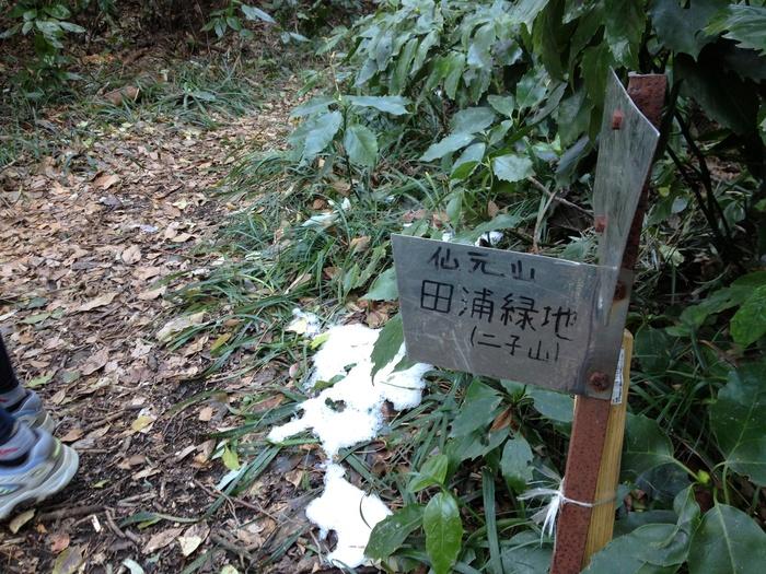 2012.1.19 三浦アルプスでジョグ_b0219778_11958.jpg