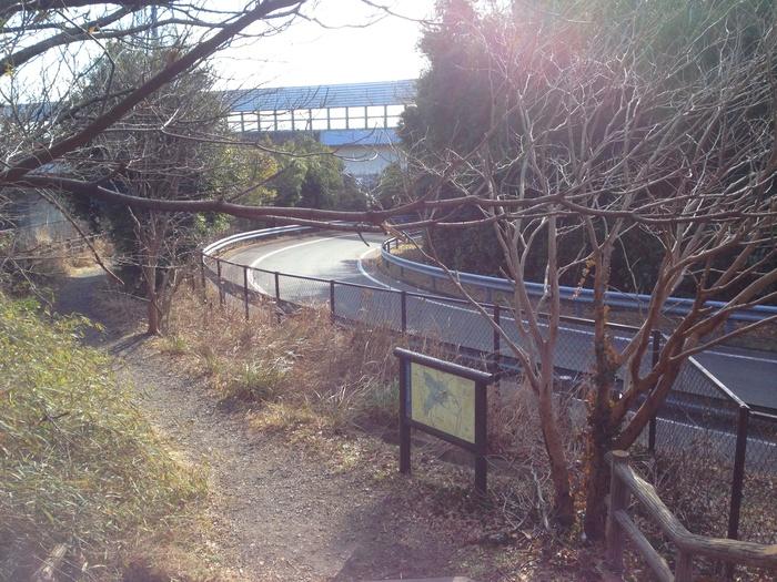 2013.1.26 トレランで鎌倉へ(金沢文庫-鎌倉)_b0219778_20152818.jpg