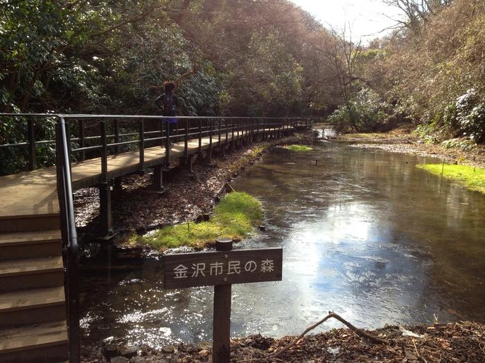 2013.1.26 トレランで鎌倉へ(金沢文庫-鎌倉)_b0219778_20222760.jpg