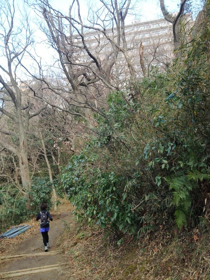 2013.1.26 トレランで鎌倉へ(金沢文庫-鎌倉)_b0219778_2065751.jpg