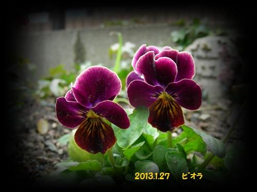 b0096584_16601.jpg