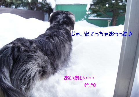 f0195891_16442994.jpg