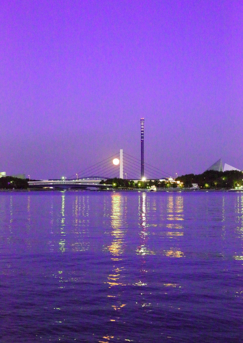 お散歩日和_b0275998_2040851.jpg
