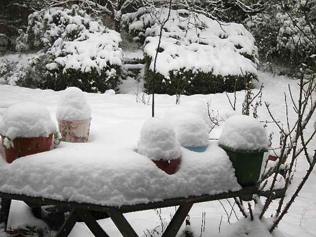 雪の日_f0123922_1522992.jpg