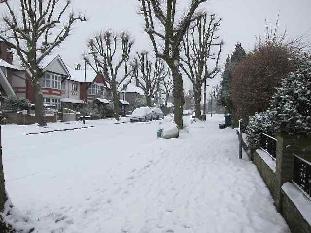 雪の日_f0123922_1542755.jpg