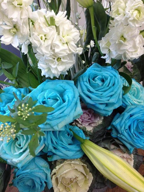 今週のお花とセール情報_a0200423_20192964.jpg