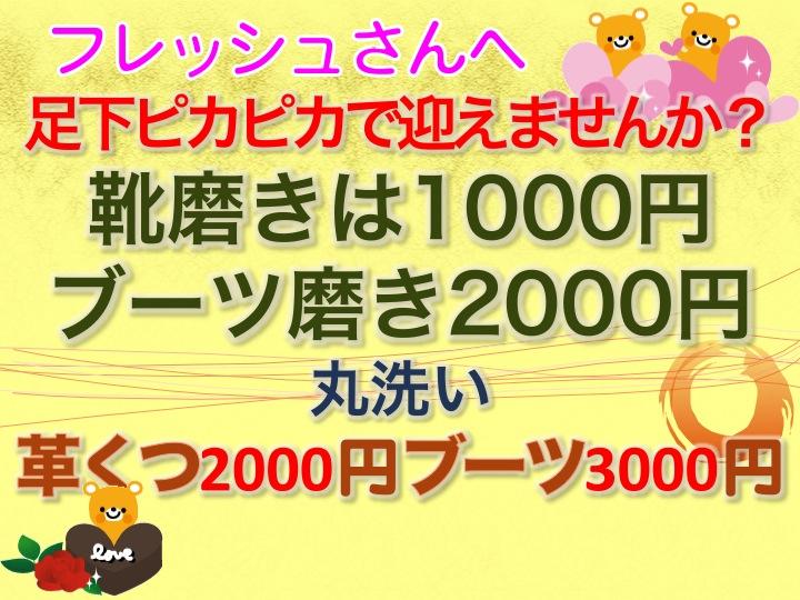 今週のお花とセール情報_a0200423_2019577.jpg