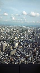 24時間テレビ 嵐_c0165824_1728167.jpg