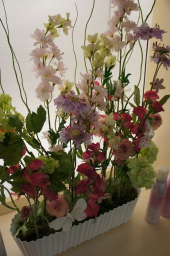 のびやかな春のディスプレイ_f0155431_22245316.jpg