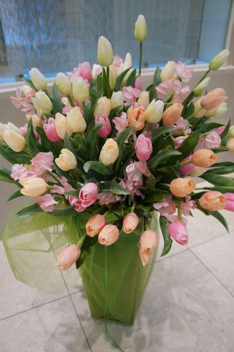 のびやかな春のディスプレイ_f0155431_2227625.jpg