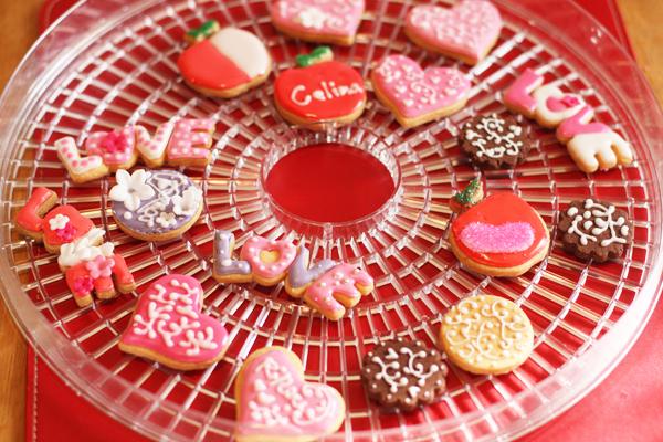 バレンタインのアイシングクッキー♡_f0149855_1795956.jpg