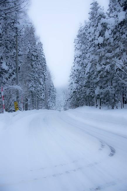 雪回廊_e0271864_2222185.jpg
