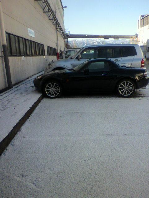 また雪…_a0059484_951160.jpg