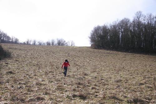 冬のお散歩_f0106597_0304270.jpg