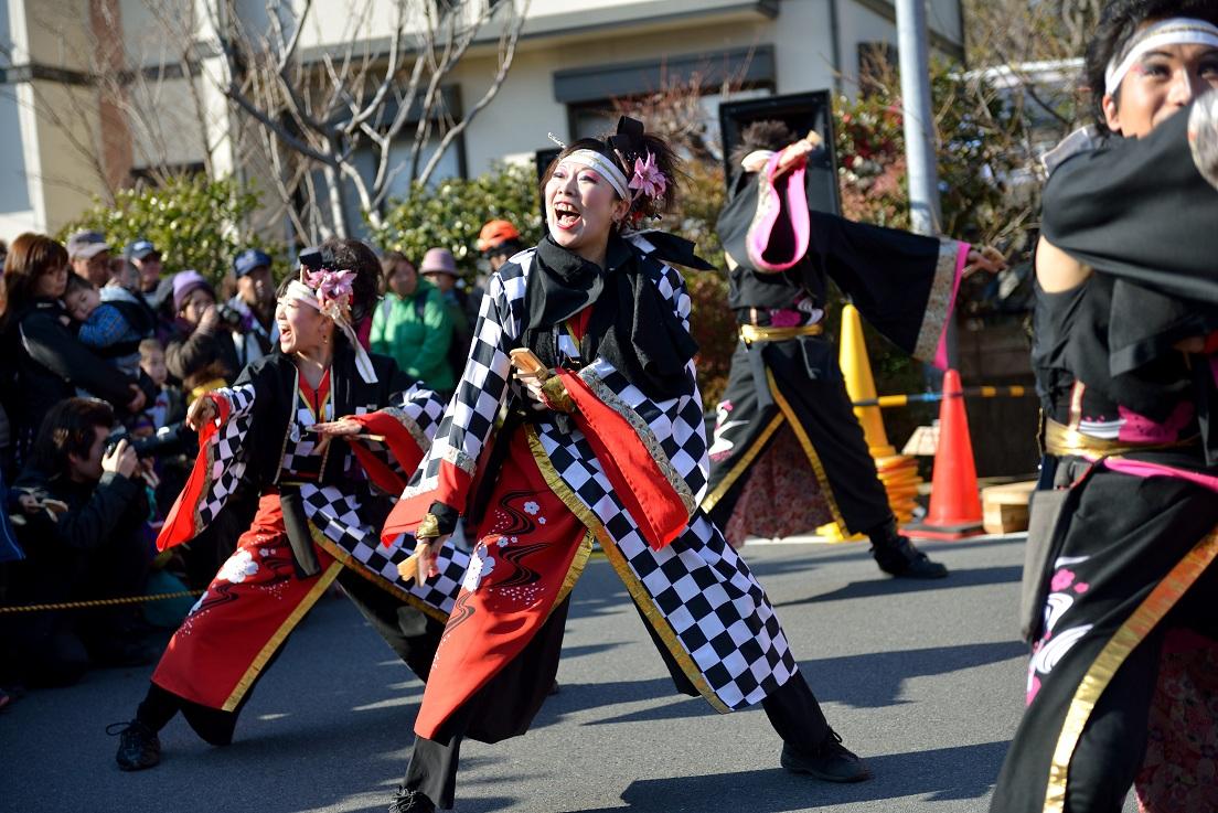 第14回吾妻さんよさこいパレード「銀輪舞隊」_f0184198_20524462.jpg