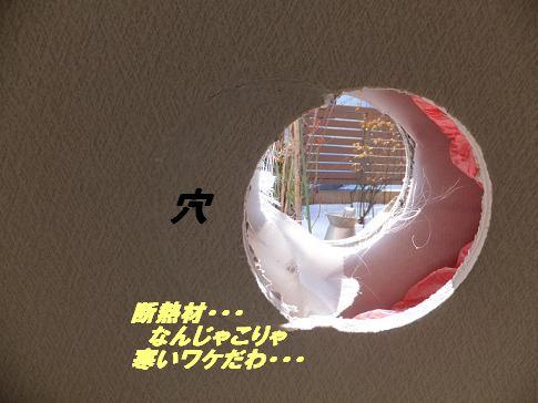 f0179203_17511100.jpg