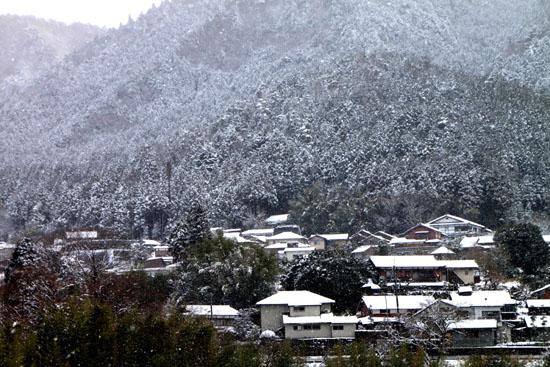 大原 雪化粧_e0048413_19462611.jpg