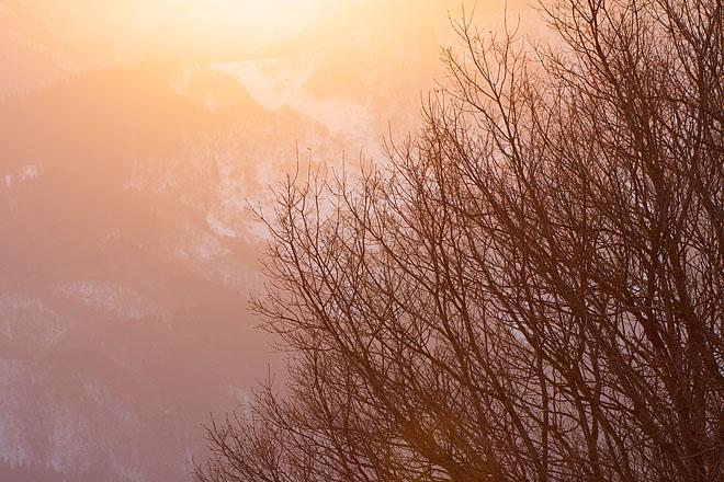 大岡山雪景色 ~Evening Glow~_c0067040_22473038.jpg