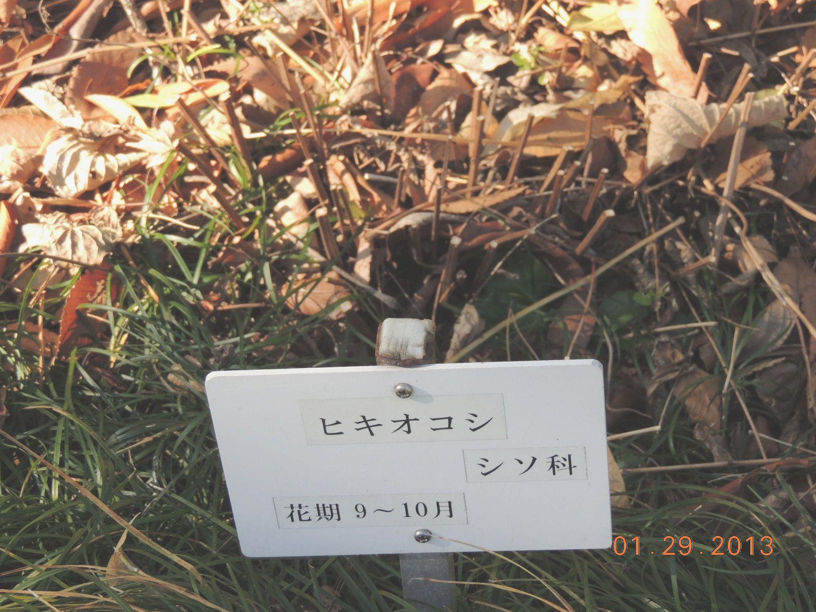 f0104277_19295746.jpg
