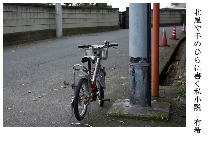 子供自転車_a0248481_20445219.jpg