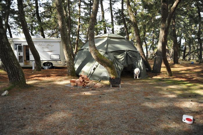 雪中キャンプ in 知内浜 part1_a0049296_2010742.jpg
