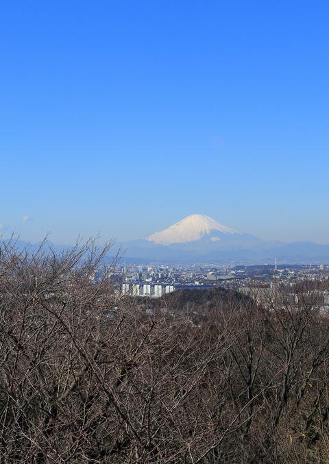山頂の戦い_b0275998_15581146.jpg