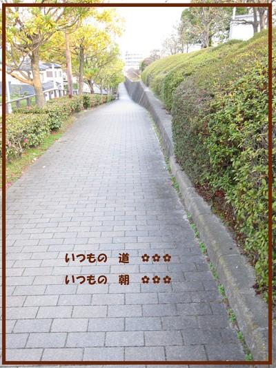 f0230625_84661.jpg