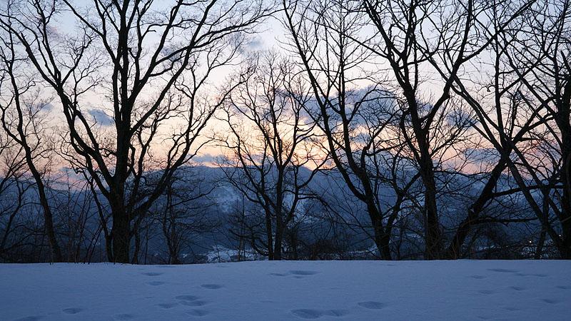 大岡山雪景色 ~Final~_c0067040_22141470.jpg