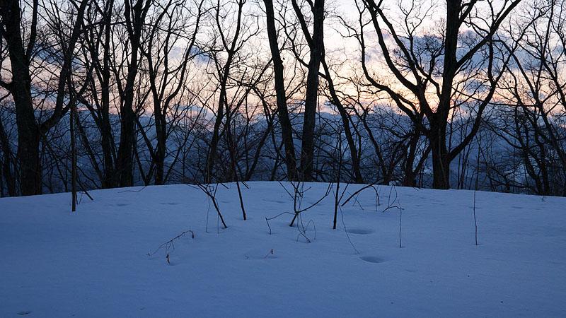 大岡山雪景色 ~Final~_c0067040_22162762.jpg