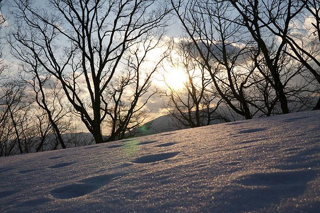 大岡山雪景色 ~Final~_c0067040_2216337.jpg