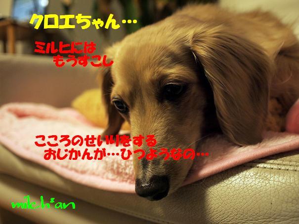 b0115642_2264959.jpg