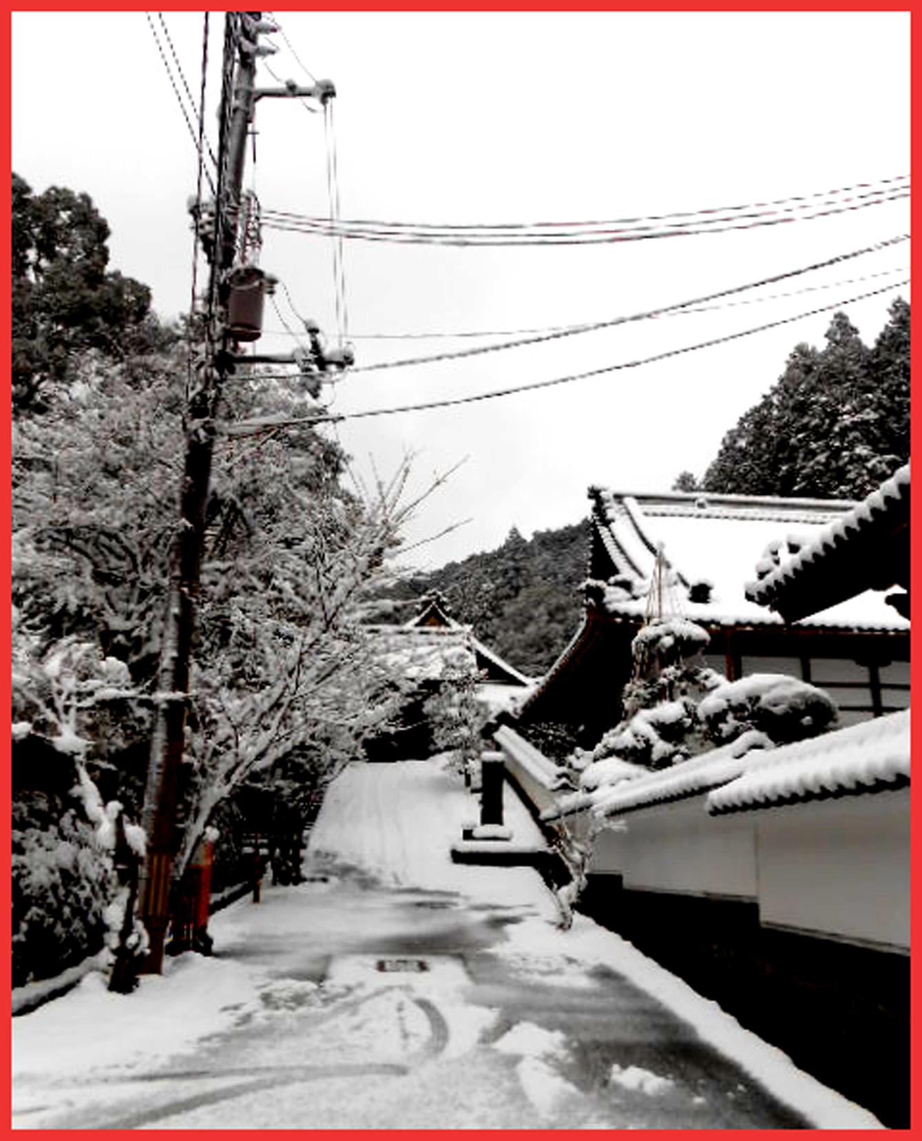 ぼたんちゃんは雪の出石へ、ワタシはゴロ寝。_e0236072_14343331.jpg