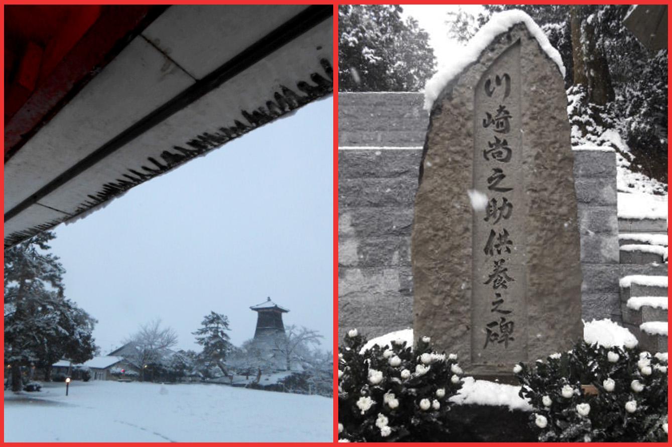 ぼたんちゃんは雪の出石へ、ワタシはゴロ寝。_e0236072_1439499.jpg