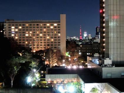 宿泊先のホテルの窓からは東京タワーもチラリと...._b0194185_23214613.jpg