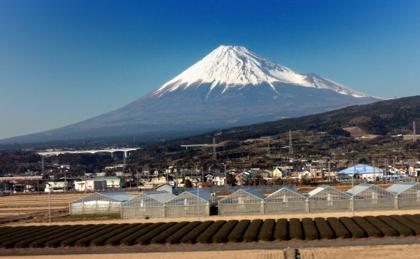 宿泊先のホテルの窓からは東京タワーもチラリと...._b0194185_23234980.jpg