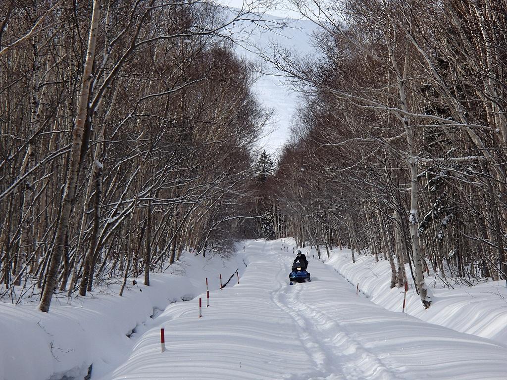 1月28日、樽前山-その2-_f0138096_12353396.jpg