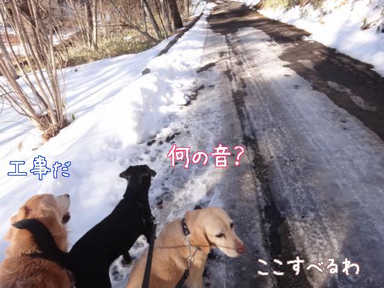 雪で洗う_f0064906_16593987.jpg