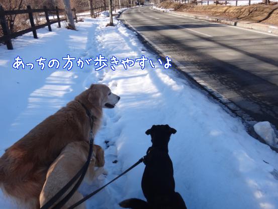 雪で洗う_f0064906_1761715.jpg