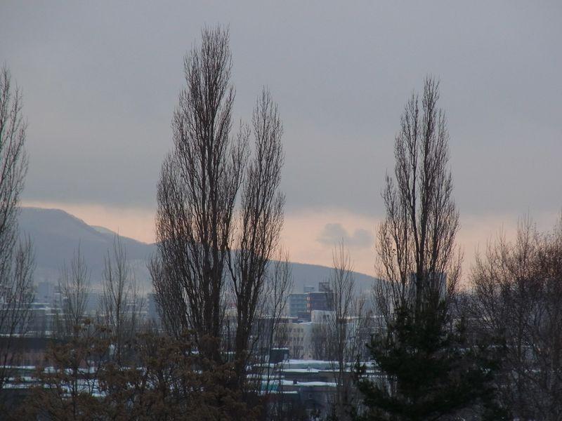 垣間見た春の夕陽_c0025115_20363235.jpg