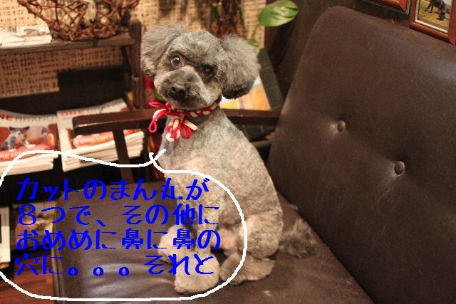 b0130018_17145938.jpg