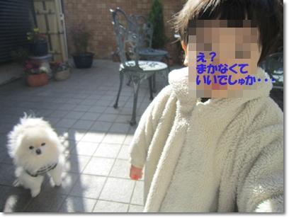 b0167519_21365592.jpg