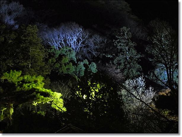 嵐山花灯路_b0025947_13325576.jpg