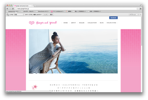 【撮影情報】ginger and sprout Love、spring collection_f0201310_11374046.png
