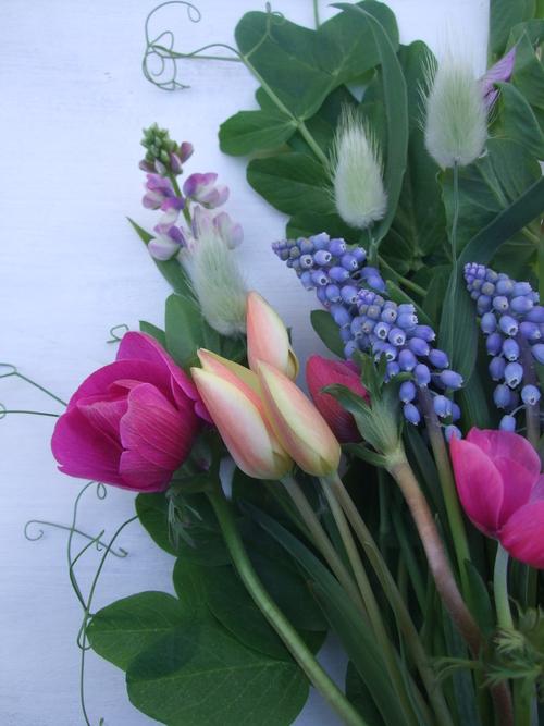 オークリーフ(小さな球根切り花の花束)_f0049672_16595279.jpg